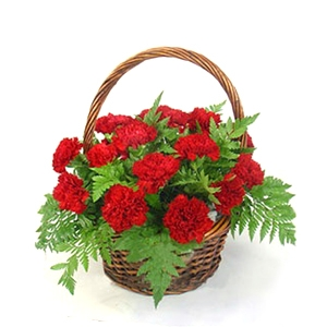 New Carnation Basket 06