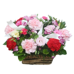New Carnation Basket 09