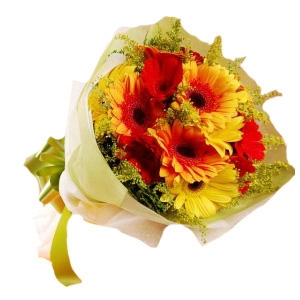 Exclusive Gerbera Bouquet 11