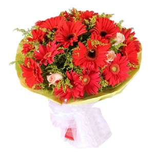 Exclusive Gerbera Bouquet 14