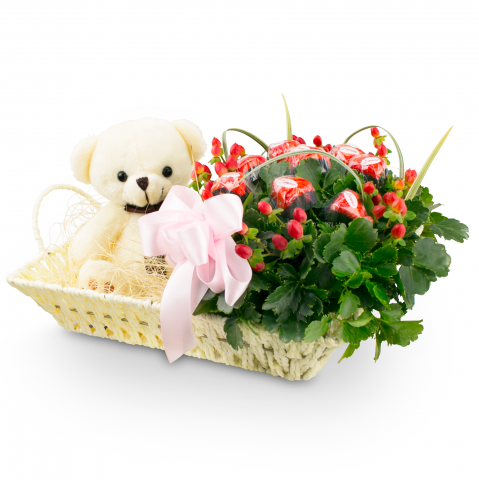 Bear L'amour Chocolate Basket 02