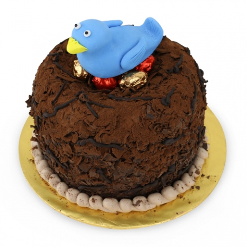 Bird Nest Chocolate Cake