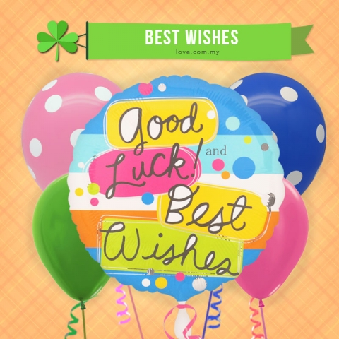 (ECB12) Good Luck! & Best Wishes Balloon