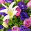 Imported Purple Roses Bouquet 05