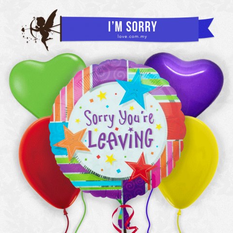 (ECB14) Sorry You're Leaving Balloon