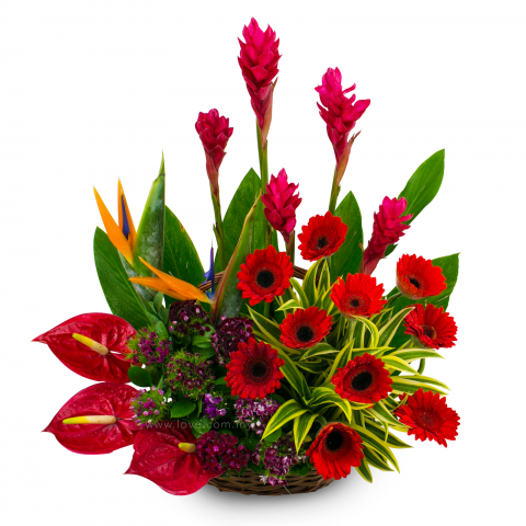 florist kl malaysia delivering fresh flowers everyday