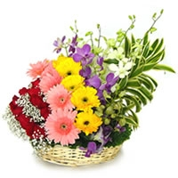 New Flower Basket 06